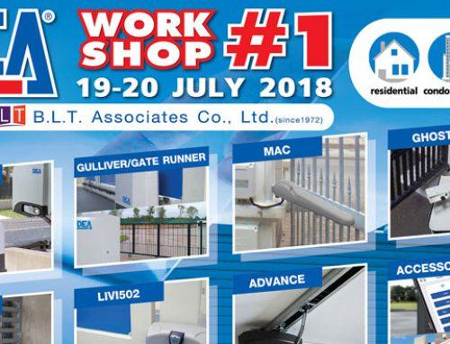 DEA WORKSHOP